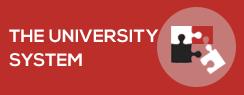 The University system
