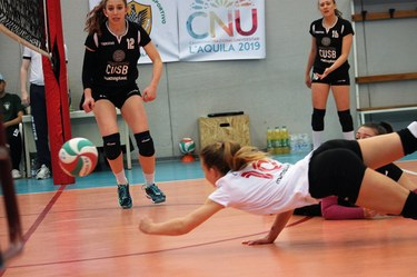 Female volleyball