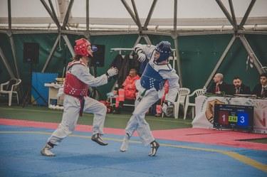 Taekwondo cat. 68 kg