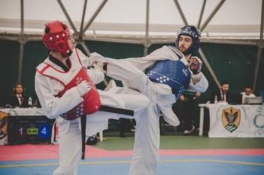 Taekwondo cat. 80 kg