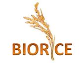 Logo BIORICE